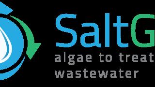 Logo-Saltgae.eu_